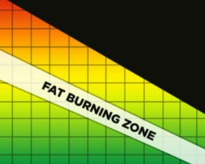 fat burning zone